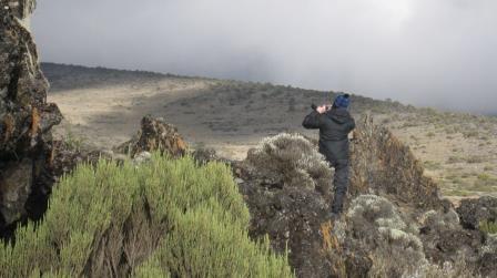 shira-camp-kilimanjaro-alpine-landscape