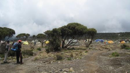 shira-camp-kilimanjaro-guides