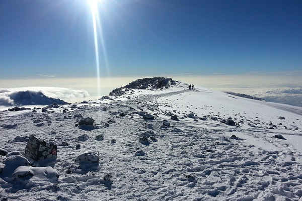 kilimanjaro success rates