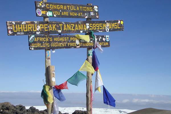 Climb Kilimanjaro No 1 Kilimanjaro Hike Guide