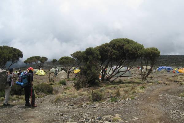 shira camp kilimanjaro