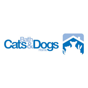 Bath Cats and Dogs home