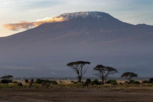 kilimanjaro park fees