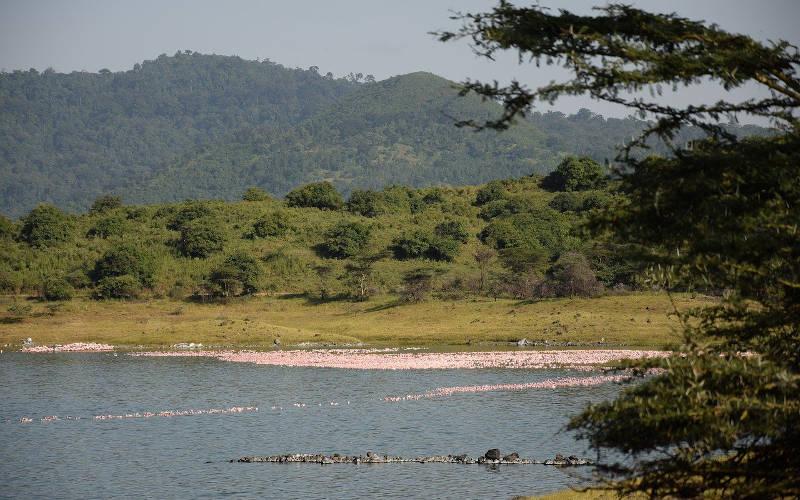 arusha-tanzania