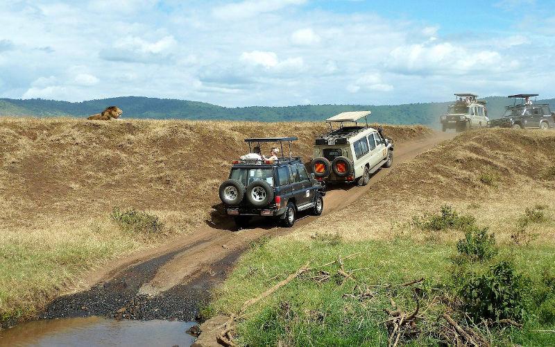 ngorongoro-tanzania
