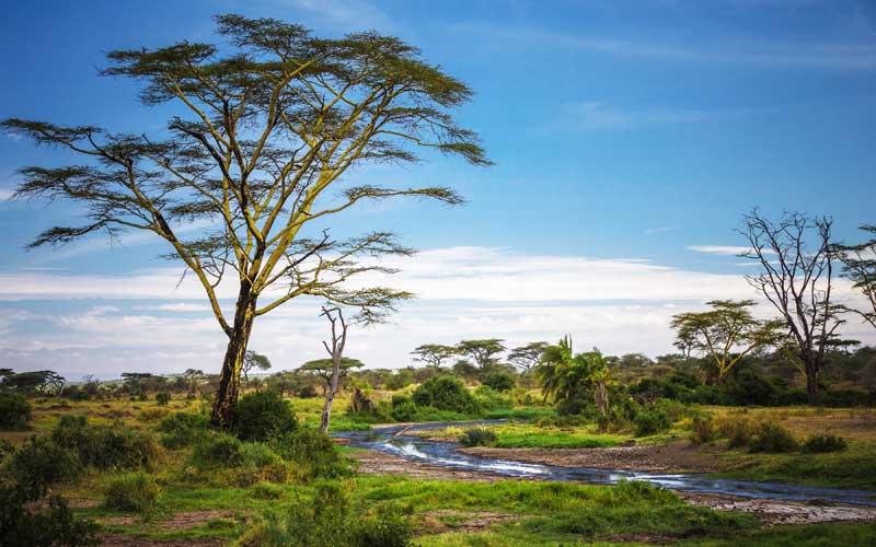 Best time to visit Serengeti