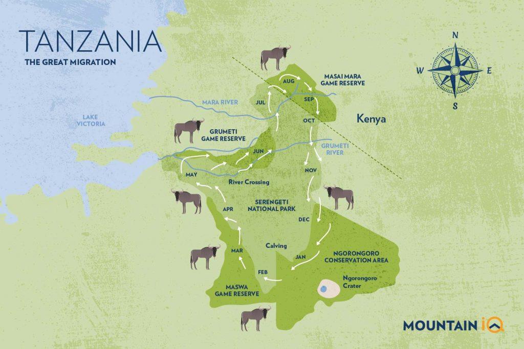 Great Wildebeest Migration Map