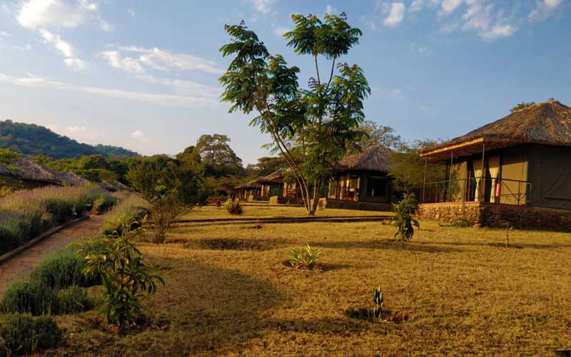 Sarari-Lodges-Tanzania