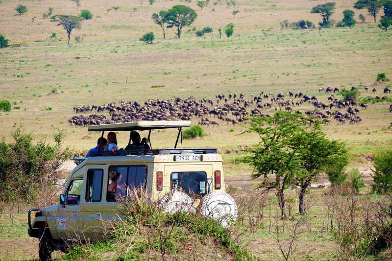 Tanzania-safari-cost
