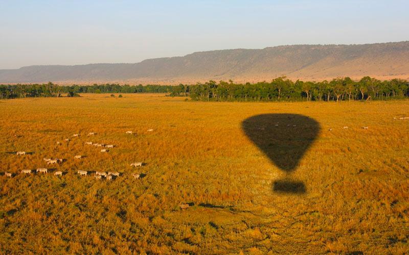 Air-balloon-safari-zebras