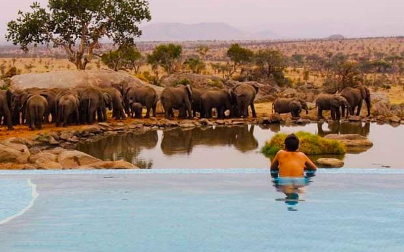 Four Seasons Serengeti Safari Lodge