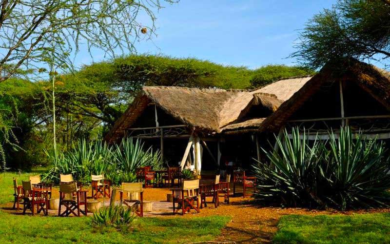 Ikoma Safari Camp