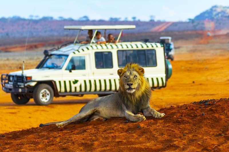 Kenya-Tanzania-Safari