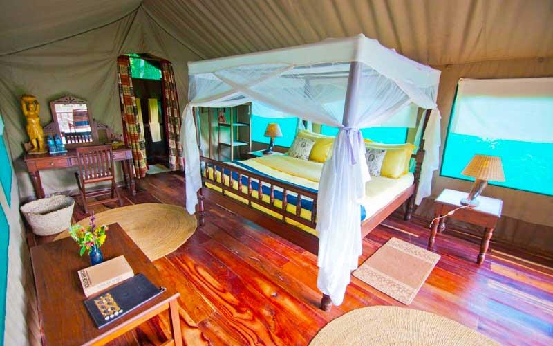 Mbali Mbali Gombe Lodge