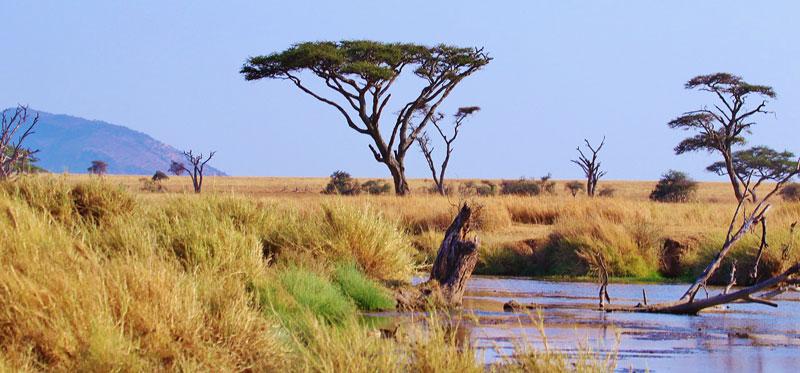 Serengeti-Plains-River