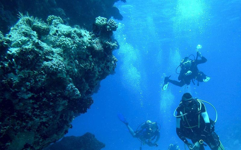 Underwater-diving-Zanzibar
