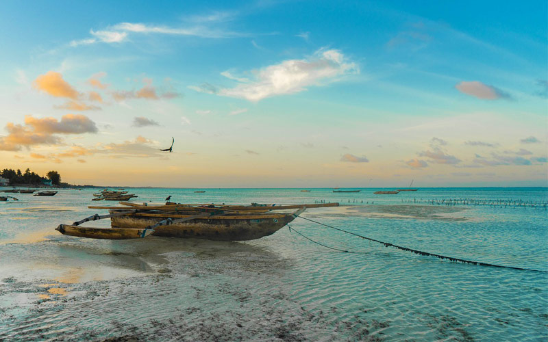 Kizimkazi-Beach-Zanzibar-Beach
