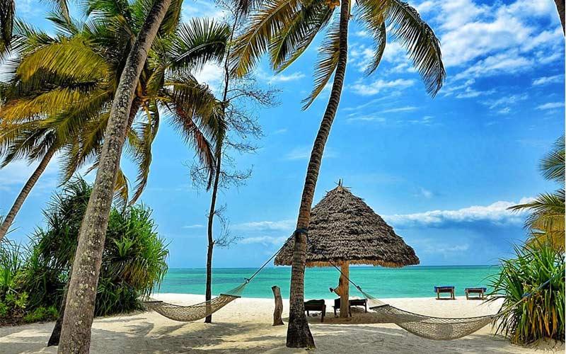 Pongwe Beach Zanzibar Beach