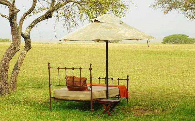 Tanzania Safari and Beach