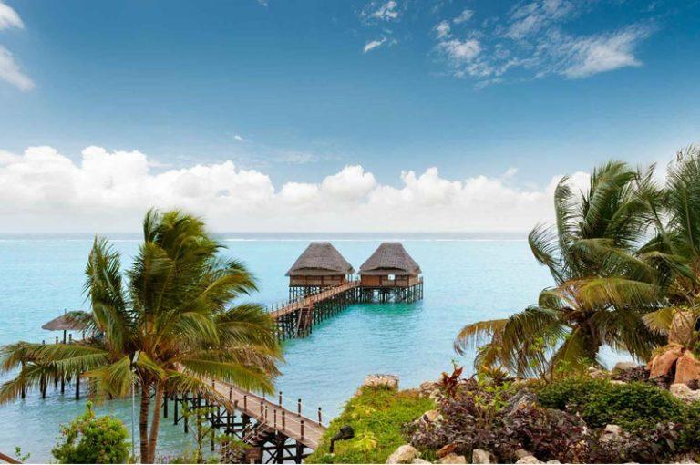 Melia-Zanzibar