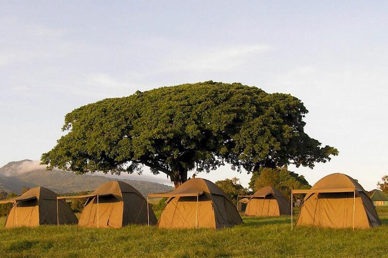 Ngorongoro-Simba-Campsite