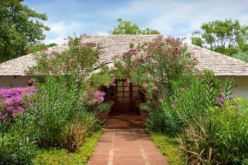 The-Plantation-Lodge-Ngorongoro-Hotels